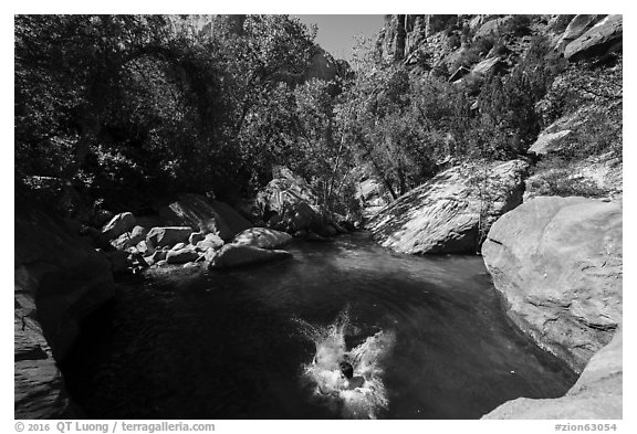 Swimming hole, Pine Creek. Zion National Park (black and white)