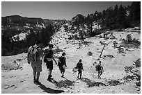 Hikers on slabs in Russell Gulch. Zion National Park ( black and white)