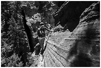Hiker on narrow ledge, Russell Gulch. Zion National Park ( black and white)