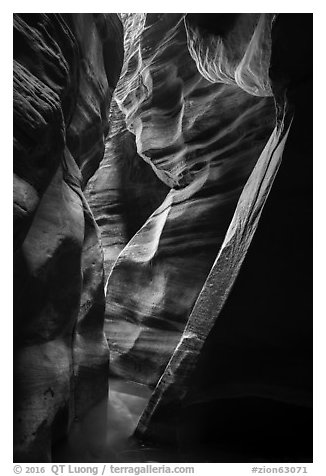 Tight and sculptured section of Upper Left Fork slot canyon. Zion National Park (black and white)