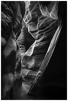 Tight and sculptured section of Upper Left Fork slot canyon. Zion National Park ( black and white)