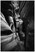 Tight squeeze, Upper Left Fork (Das Boot). Zion National Park ( black and white)