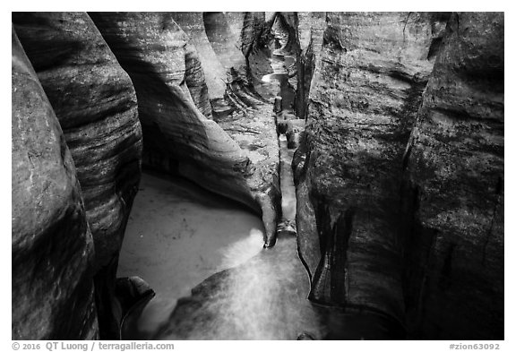 Golden reflections in tight passageway, Left Fork. Zion National Park (black and white)