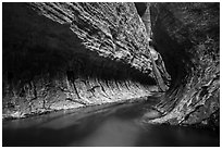 Left Fork flows in tight section of Upper Subway. Zion National Park ( black and white)