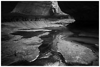 Upper Subway (Left Fork). Zion National Park ( black and white)