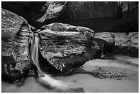 Waterfalls, Upper Subway. Zion National Park ( black and white)