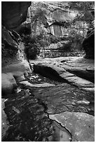 Green reflections, Upper Subway. Zion National Park ( black and white)