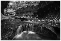 Cascades and pools, the Subway. Zion National Park ( black and white)