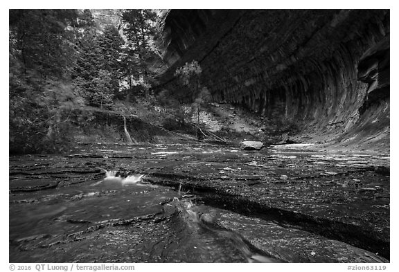 Red travertine terraces and alcove in the spring. Zion National Park (black and white)