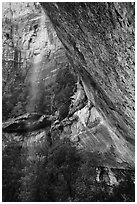 Water trickle and alcove above Emerald Pool in the spring. Zion National Park ( black and white)