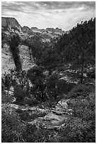 Russell Gulch. Zion National Park ( black and white)