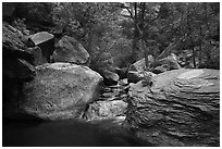 Left Fork flowing amongst boulders. Zion National Park ( black and white)