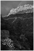 Rainbow over South Guardian Angel. Zion National Park ( black and white)