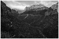 South Guardian Angel towering above Lower Left Fork. Zion National Park ( black and white)