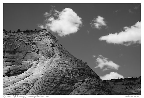 White cliffs, Zion Canyon rim. Zion National Park (black and white)