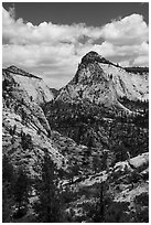 View from West Rim Trail. Zion National Park ( black and white)