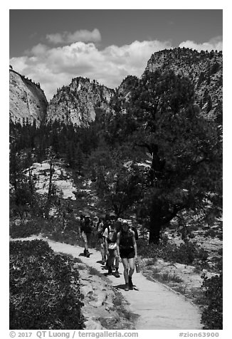 Backpackers on West Rim Trail. Zion National Park (black and white)