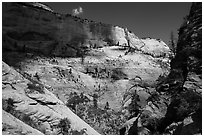 Walls of Mount Majestic from Behunin Canyon. Zion National Park ( black and white)