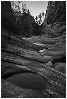 Water-filled potholes, Behunin Canyon. Zion National Park ( black and white)