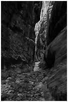 Narrows, Behunin Canyon. Zion National Park ( black and white)
