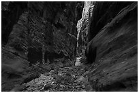 Narrow passage between tall walls, Behunin Canyon. Zion National Park ( black and white)