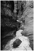 Sandy bottom of narrows, Behunin Canyon. Zion National Park ( black and white)