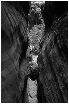 Chockstone wedged in narrows, Behunin Canyon. Zion National Park ( black and white)