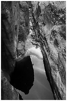 Pool from above, Behunin Canyon. Zion National Park ( black and white)