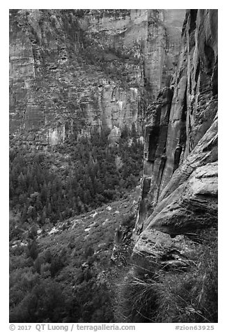 Cliff above Emerald Pools. Zion National Park (black and white)