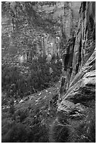 Cliff above Emerald Pools. Zion National Park ( black and white)