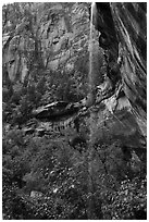 Waterfall above Lower Emerald Pool. Zion National Park ( black and white)