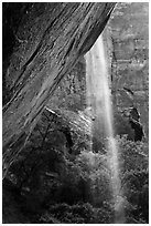 Waterfall on alcove above Lower Emerald Pool. Zion National Park ( black and white)