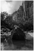 Boulder and cliffs, Upper Emerald Pool. Zion National Park ( black and white)
