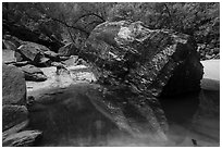 Dark boulder and reflection in Upper Emerald Pool. Zion National Park ( black and white)