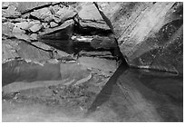 Rock reflections, Upper Emerald Pool. Zion National Park ( black and white)