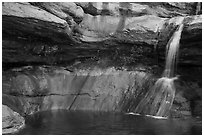 Pine Creek waterfall. Zion National Park ( black and white)