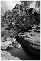 Tower above pool in Pine Creek Canyon. Zion National Park ( black and white)