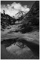 Pothole and reflection, Zion Plateau. Zion National Park ( black and white)