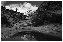 Peak reflected in pothole, Zion Plateau. Zion National Park ( black and white)