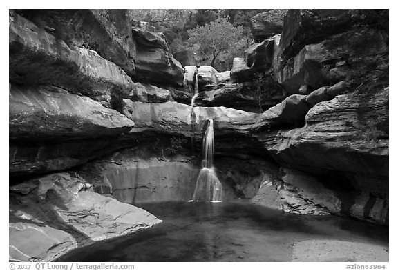 Pine Creek Falls. Zion National Park (black and white)