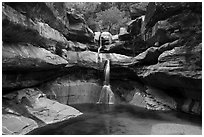 Pine Creek Falls. Zion National Park ( black and white)