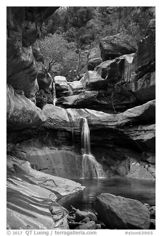 Pine Creek Falls in Pine Creek Canyon. Zion National Park (black and white)