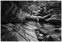Pine Creek Canyon with waterfall. Zion National Park ( black and white)
