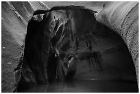 Cathedral chamber, Pine Creek Canyon. Zion National Park ( black and white)