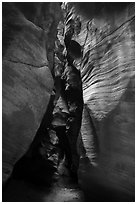 Narrows, Pine Creek Canyon. Zion National Park ( black and white)