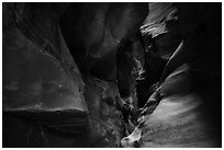 Sculptured slot canyon walls, Pine Creek Canyon. Zion National Park ( black and white)