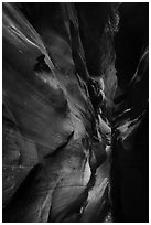 Flash-flood Sculptured slot canyon walls, Pine Creek Canyon. Zion National Park ( black and white)