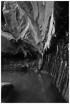 Room with striated walls, Pine Creek Canyon. Zion National Park ( black and white)