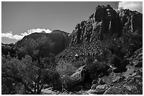 Pine Creek Canyon. Zion National Park ( black and white)