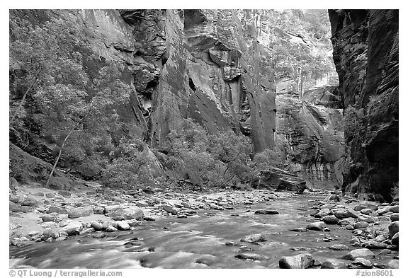 Virgin River flowing over stones in the Narrows. Zion National Park (black and white)